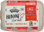 Chino Valley: Humane Harvest Large Brown Eggs, 6 Count